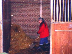 Me, in 1999, performing one of the riding stable tasks for which I am qualified -- poop scooping. 1st generation digital photo